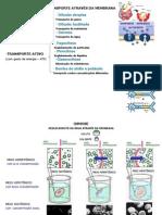 Transportes Membrana Citoplasma(PPTminimizer)
