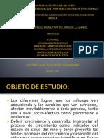 DESARROLLO  EVOLUTIVO DEL NIÑO DE 4 A 5 AÑOS