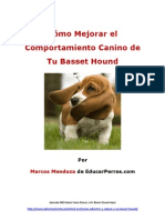 Cómo Mejorar el Comportamiento Canino de tu Basset Hound