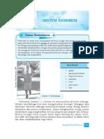 7. Sistem Ekskresi