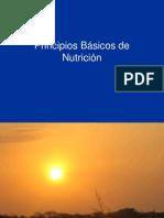 Principios Básicos de Nutrición