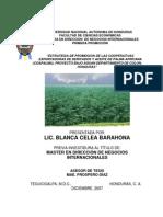 COAPALMA ,COLON, HONDURAS 2007 ESTRATEGIA DE PROMOCION
