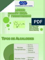 Alcaloides Fenantrenico e Indol 2