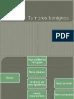 Tumores benignos dermatologicos