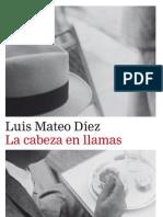 Cabeza en Llamas_web