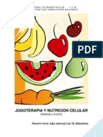 Valor Nutrimental y Curativo de Los Jugos de Verduras