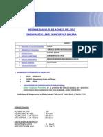 Informe Diario Onemi Magallanes 09.08