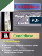 Candidiase Micologia Veterinária IPTSP UFG 03