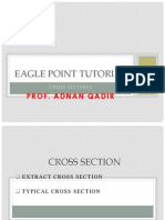 Eagle Point Tutorial - Cross Section