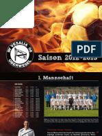 Saisonflyer 2012 Web
