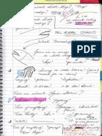 Journal 10 08.06.10 p7 - ELVIS
