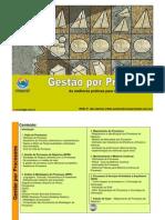 Gestao Por Processos-V3.Unlocked