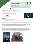 Stadium Woods tree asessment report