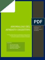 Anomalias Del Aparato Digestivo Monografia