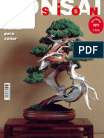 Bonsai Pasion 01