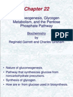 Gluconeogenesis, glycogen metabolism