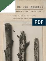MARTÍNEZ DE LA ESCALERA_La vida de los insectos en preparaciones del natural. Los enemigos de la higuera