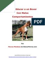 Como Educar a Un Boxer Con Malos Comportamientos
