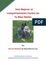 Cómo Mejorar el Comportamiento Canino de tu Blue Heeler