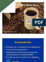 Metodologia Tazas 2011 MX