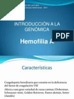 Hemofilia a en Caninos