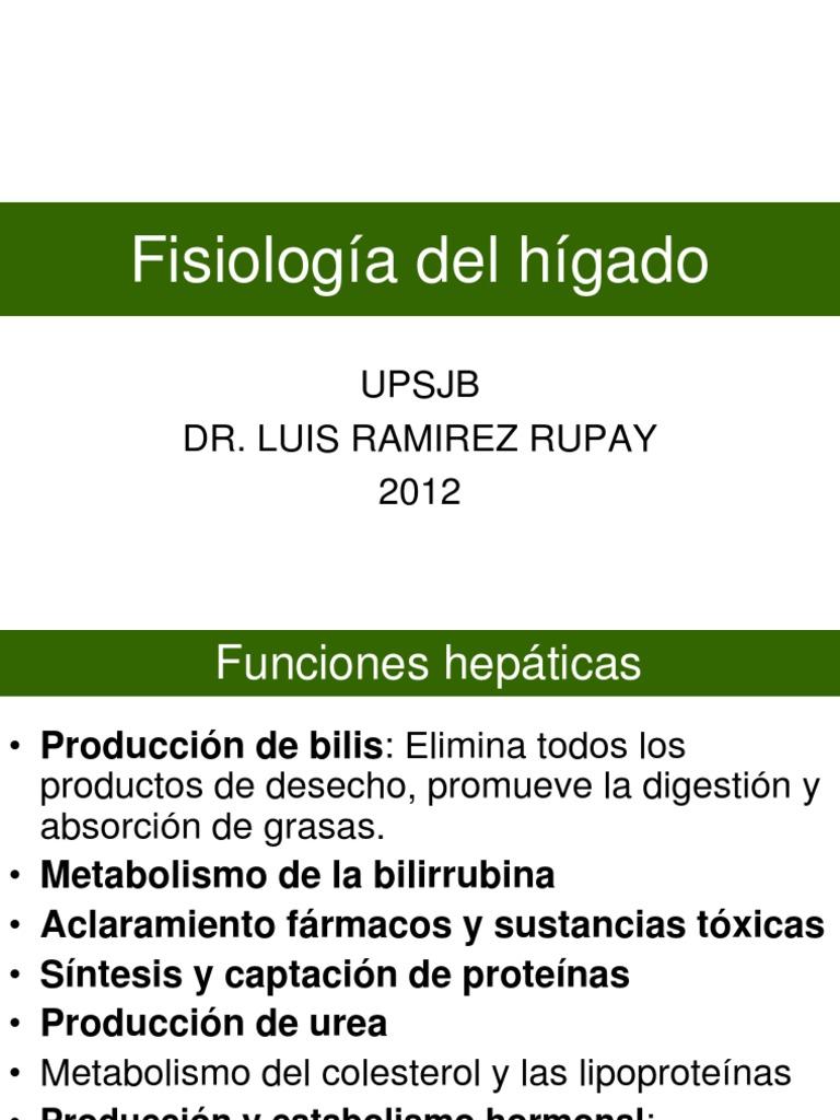 49 Fisiologia Del Higado