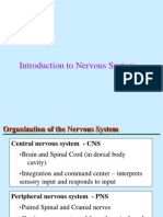 Intro to Cns (Rsl)
