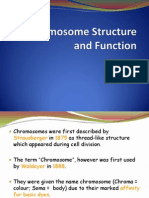 Chromosome Structure and Function