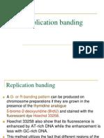 Replication Banding
