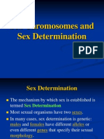 Sex Chromosomes and Sex Determination