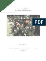 GOVT 498 Mullikin Paper