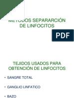 Separación Linfocitos