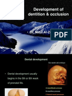 Development of Dentition and Occlusion _Dr. Nabil Al-Zubair