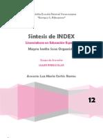 Síntesis del Index para la inclusión