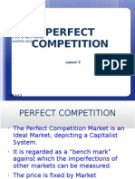 UNIT 5 Perfect Competition