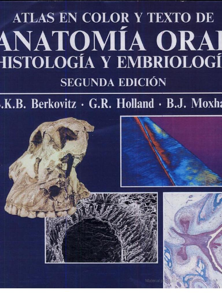 Atlas en Color y Texto de Anatom a Oral - Histolog a y Embriolog A