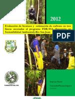 EVALUACIÓN DE BIOMASA Y ESTIMACIÓN DE CARBONO EN RIO SAN JUAN-DIEGO LINO MACARIO