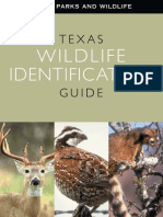 Texas Wildlife Identification Guide