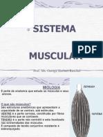 7 Sistema Muscular