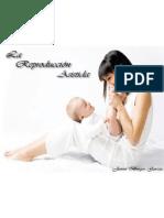 Reproduccion j 100415131320 Phpapp01