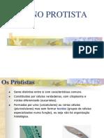 Reino Protista - 3A