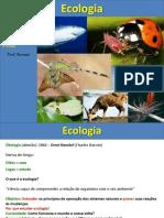 1 bimestre - noção de ecologia e nivel de energia