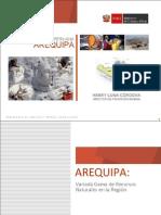 Actividad Minera Arequipa 2009