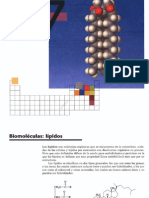3cap 27 Biomoleculas, Lipidos (Nxpowerlite)