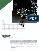 3cap 28 Biomoleculas, Heterociclos y Acidos Nucleicos (Nxpowerlite)