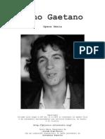 Canzoniere Rino Gaetano