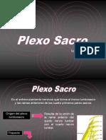 Plexo-Lumbar y Sacro (2)