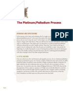The Platinum Palladium Process