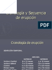 Cronología y Secuencia de erupción
