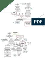DM Type 2 Pathophysiology